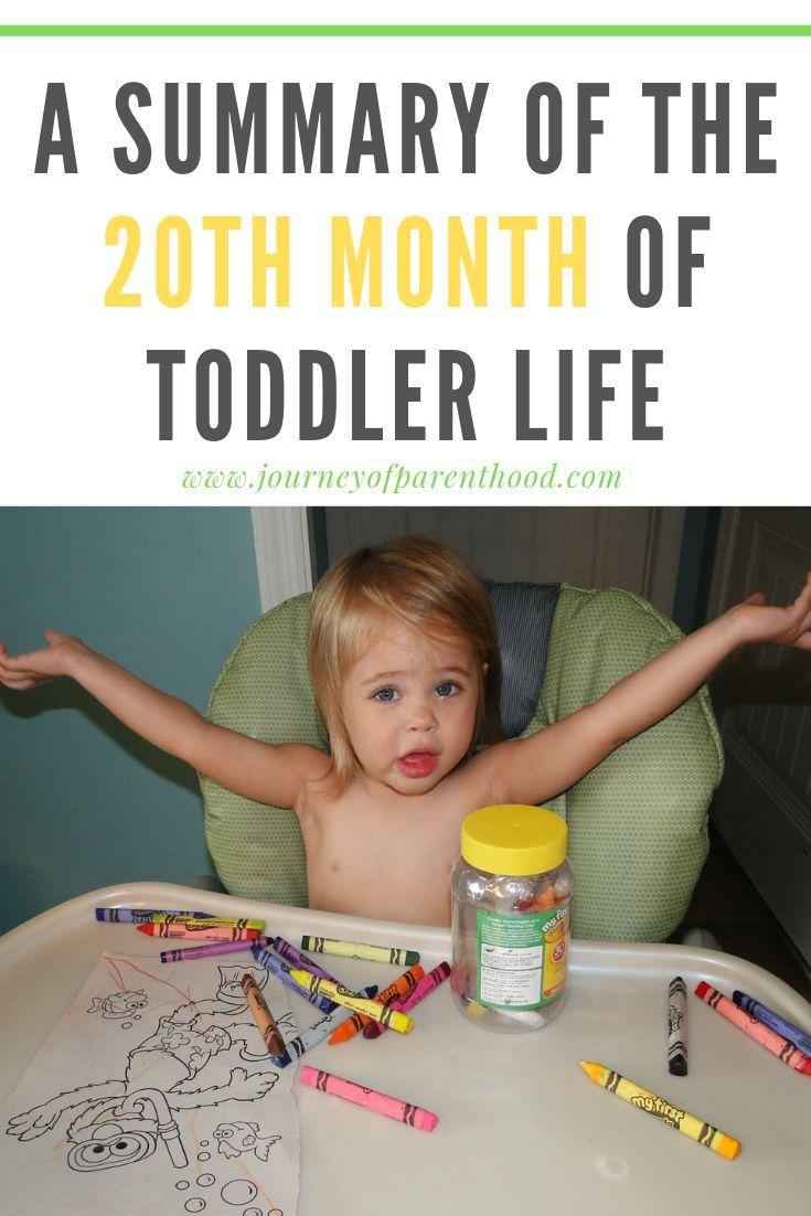 Britt summary of month 20 toddler routine toddler life