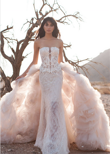 Pnina tornai most blinged gowns number 4g 382536 my dream designer pnina tornai shares the biggest questions a bride should ask when buying her wedding dress junglespirit Image collections
