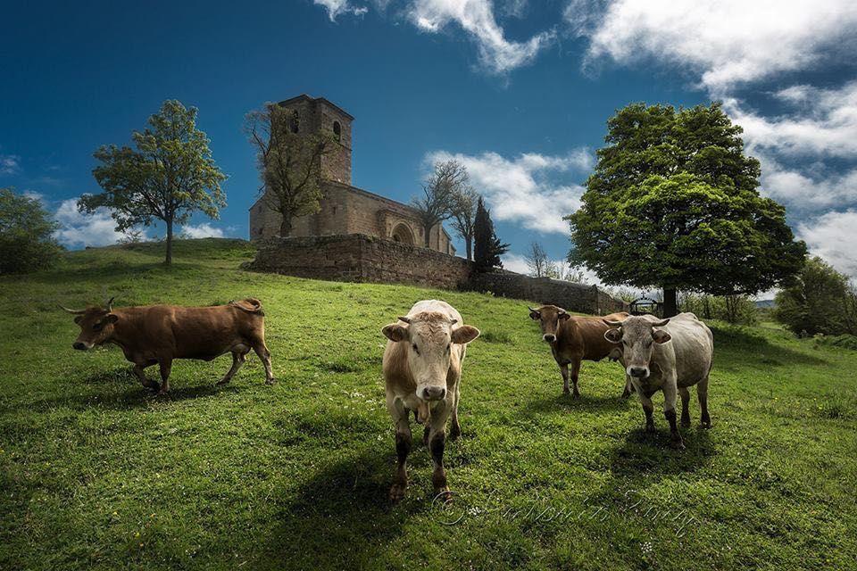 valdeolea-iglesia-antonio-ruiz