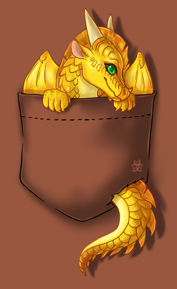 Wings Of Fire Pocket Sunny T Shirt Design By Https Www