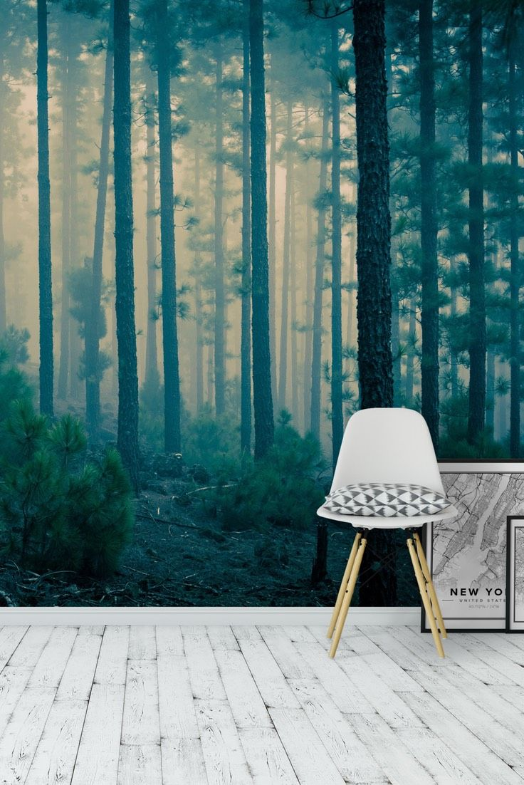 mystery forest wall mural wallpaper forest wall murals mystery forest wall mural wallpaper