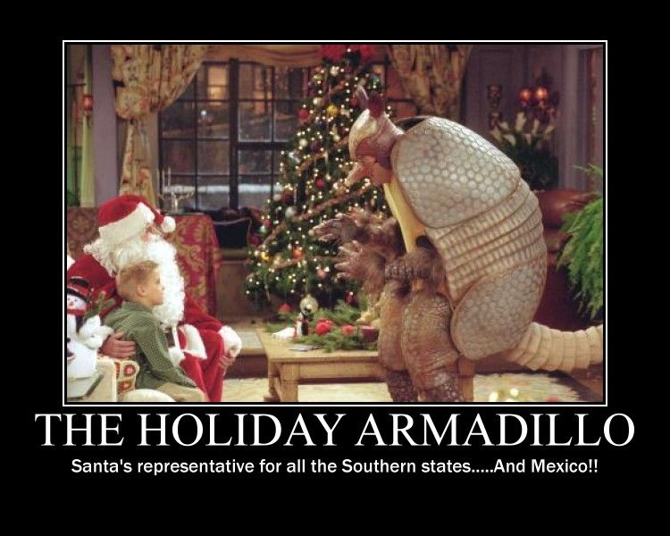 Christmas Armadillo Friends.The Holiday Armadillo Haha I Hope You See This After