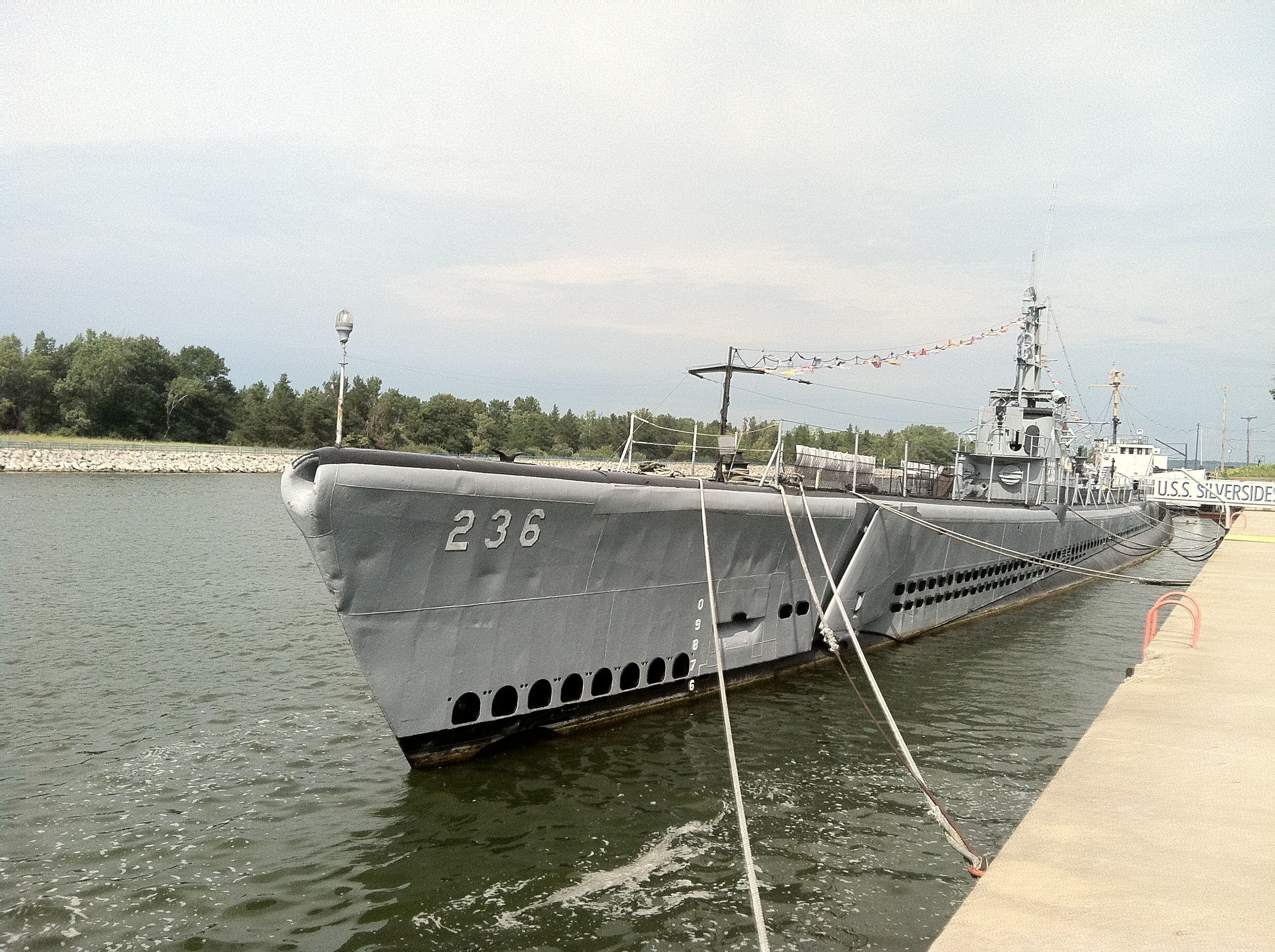 Uss Silversides Muskegon Michigan Why Do Cats Purr Cats That Dont Shed Cat In Heat
