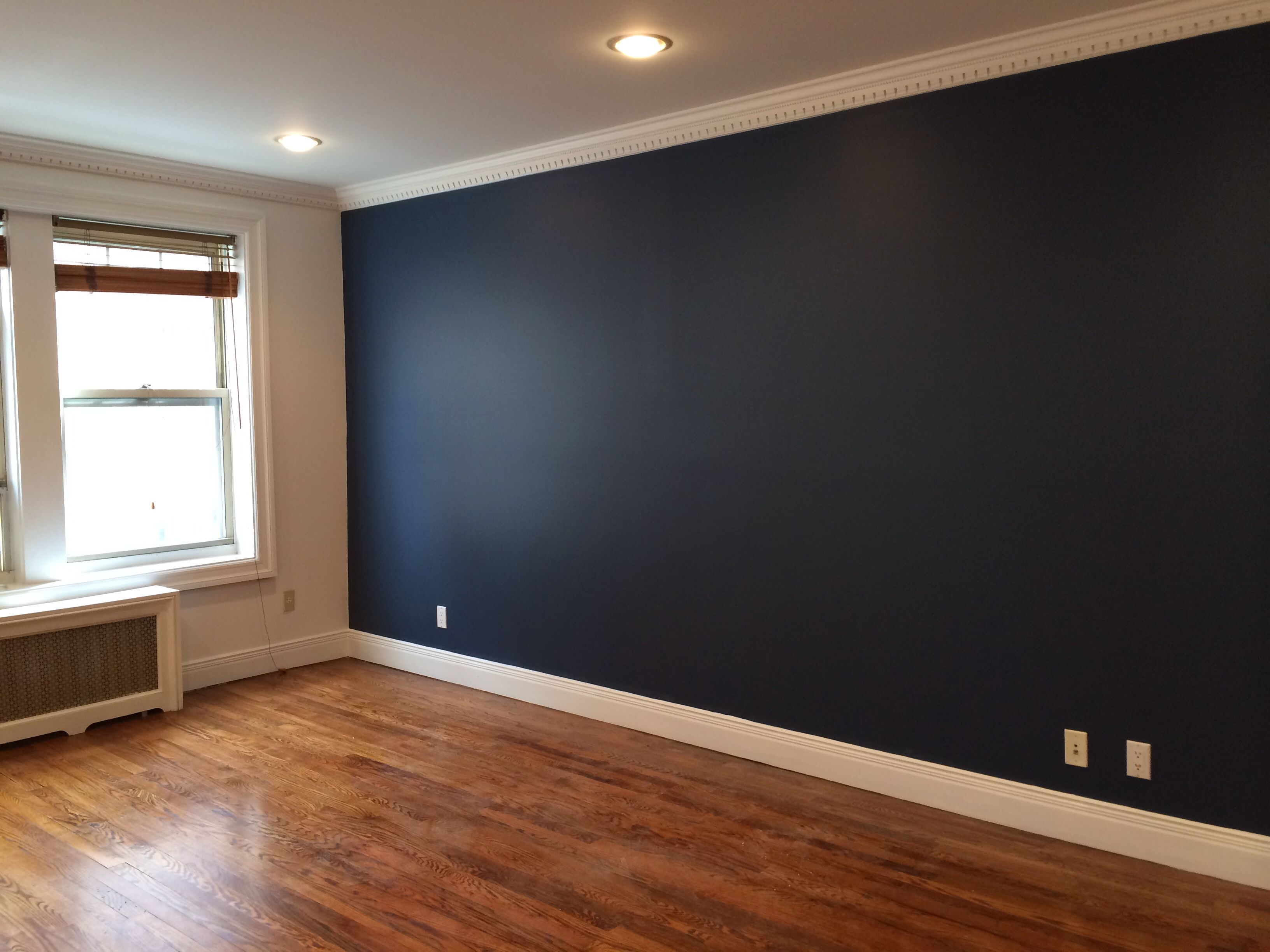 Dramatic accent wall Apartment