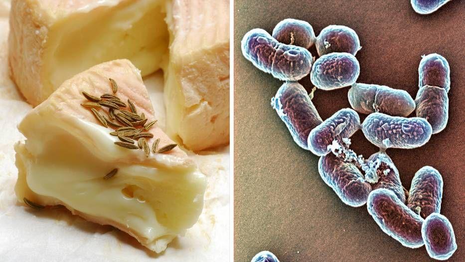 News: Todesfälle durch Listerien: Die Gefahr die im Käse lauert - http://ift.tt/2mCAykU #nachricht
