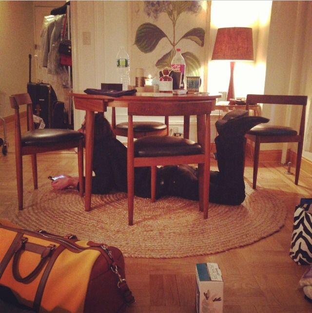 Alexa Chung S Apartment New York City Chairs Are Hans Olsen
