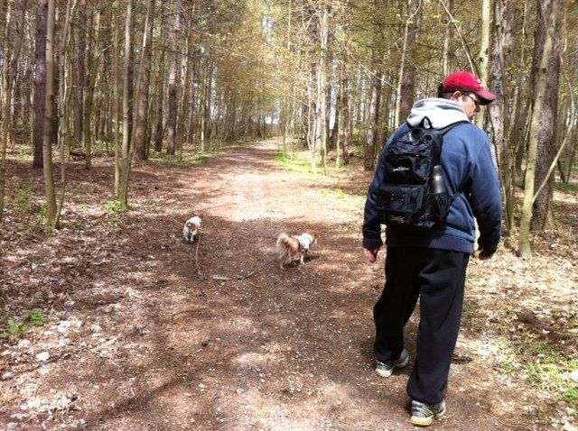 Enjoying a peaceful hike with our pups through the pinery park in North Woolwich.