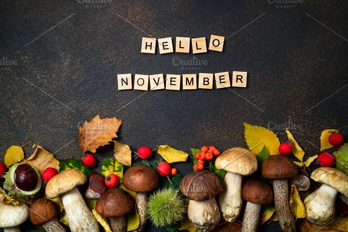 Hello September card #Sponsored , #PAID, #Boletus#Autumn#Mushroom#September