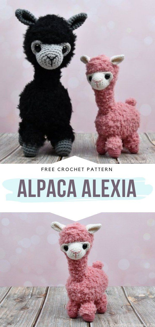 How to Crochet Alpaca Alexia
