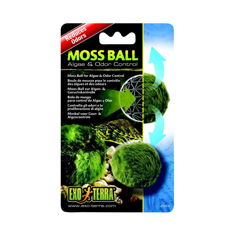 ExoTerra Moss Ball in 2019 Plants, Reptile habitat