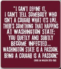 WSU is a passion.  I want this hanging in my room. All the time. Everywhere.