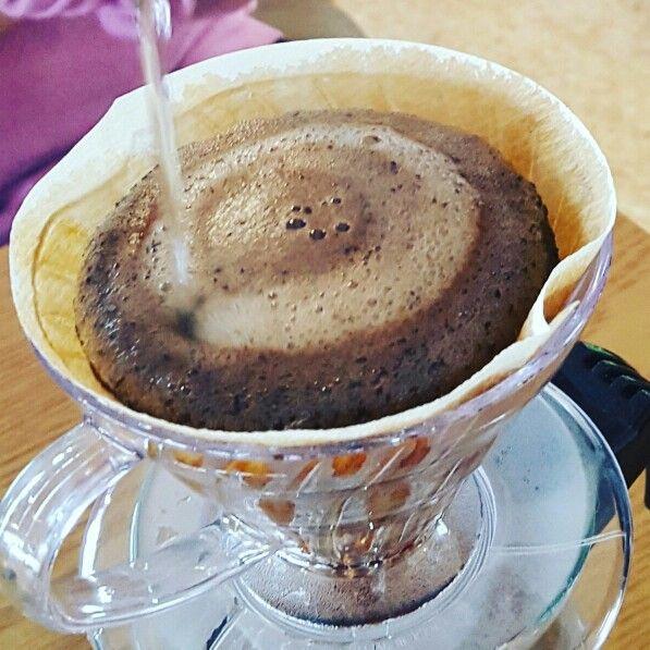 #세계3대커피 #하와이코나 #코나커피 #고흥 #빈스힐 #커피농장 #커피홀릭  #1원블로그 #기부 #커피순례자  http://m.blog.naver.com/akuempak/220640098808