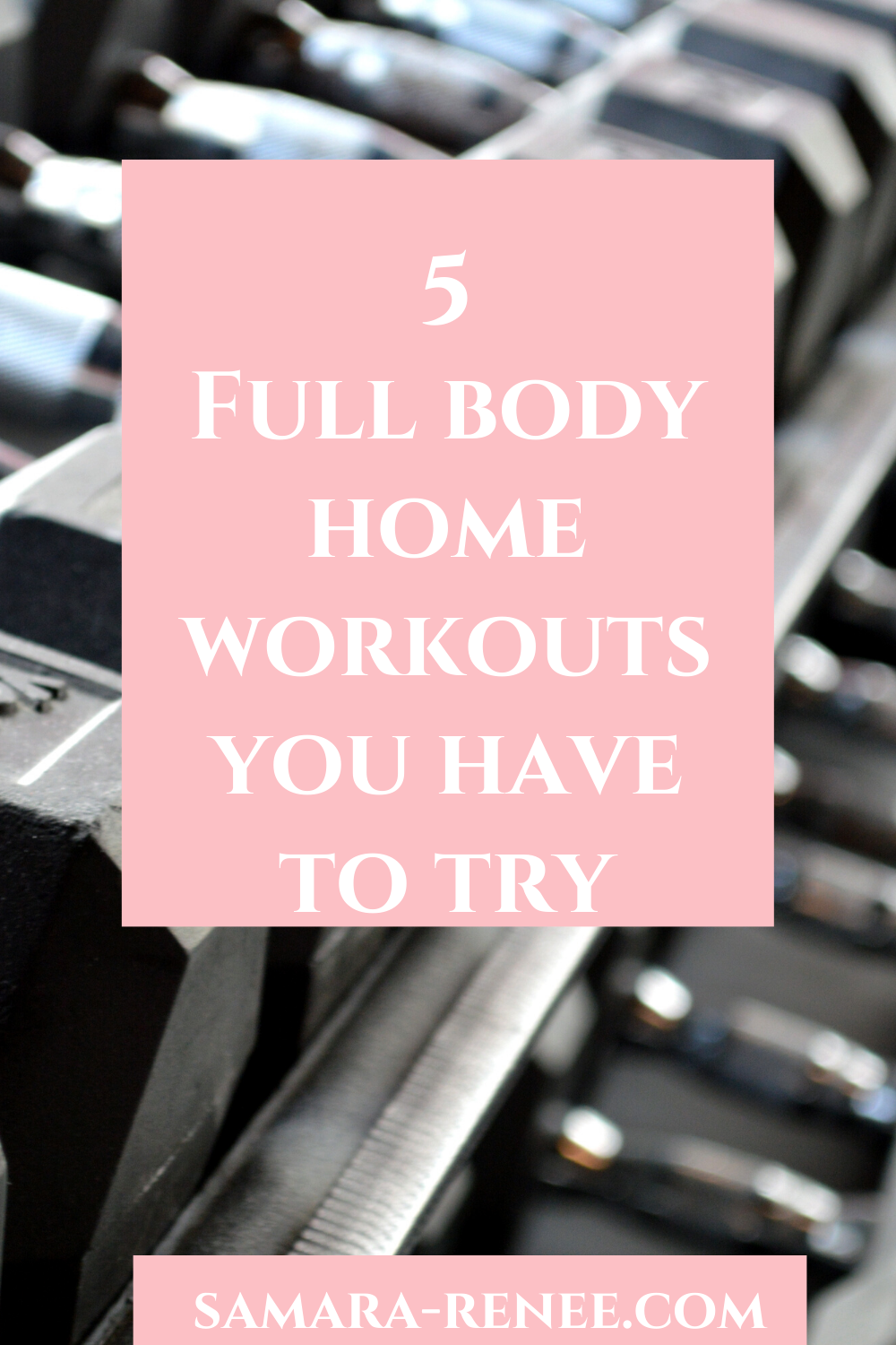 Are you looking to shed some extra pounds? Check out my article and be ready to sweat. #fitness #wor...