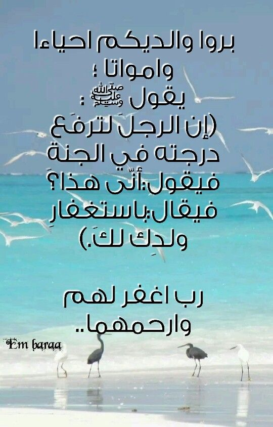 Desertrose بر الوالدين Romantic Love Quotes Best Quotes Holy Quran