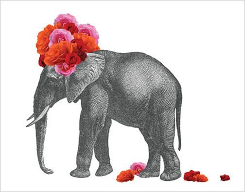 Loving these collage pieces by John Murphy. Love the contrast of the colorful flowers against the crisp black and white etching on the elephant. So unexpected.