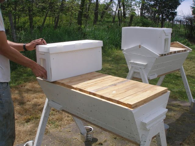 Thy Hand Hath Provided: Transferring Langstroth Nucs to ...