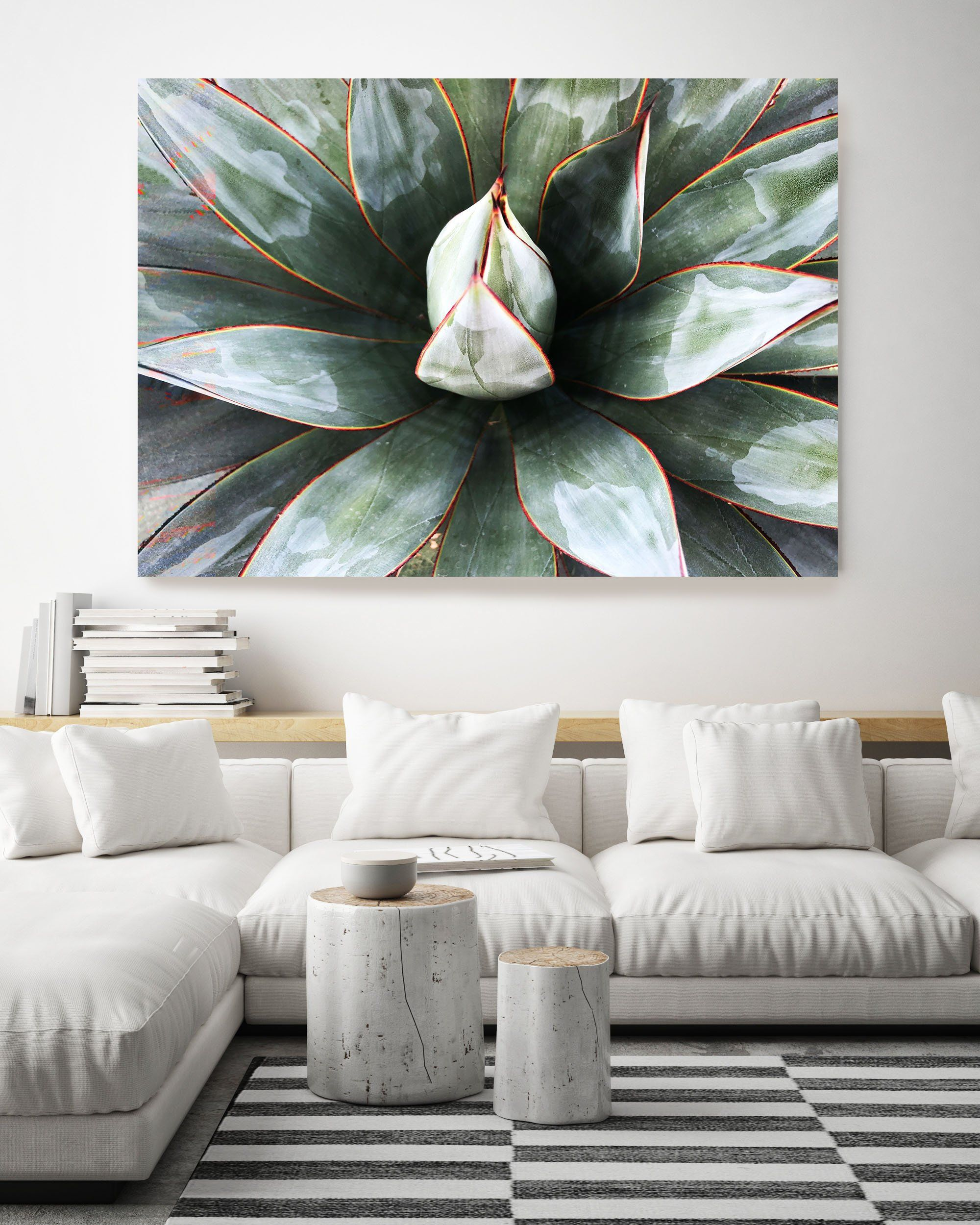 Green Tropical Star 1 Succulent Wall Art Pale Green Canvas Prints