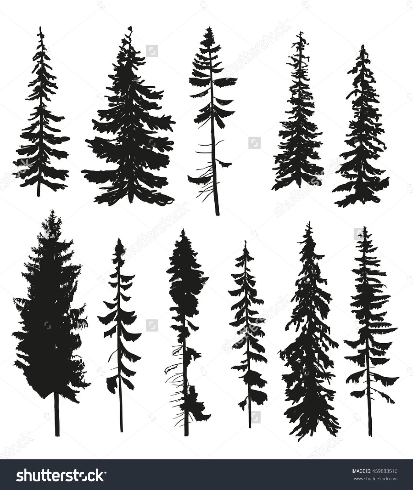 Vector Silhouettes Of Different Pine Trees. 459883516