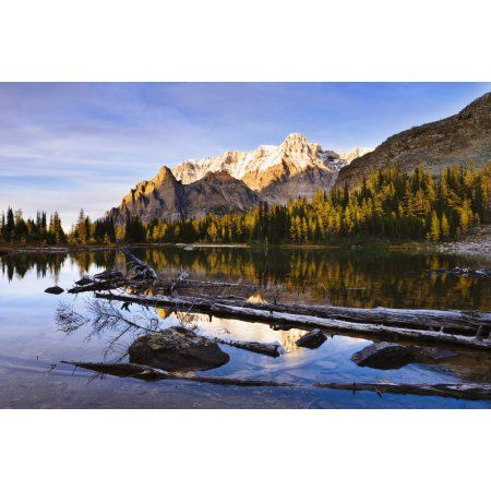 Schaffer Lake And Mount Huber At Sunset Yoho National Park British Columbia Canvas Art - Yves Marcoux Design Pics (34 x 22)
