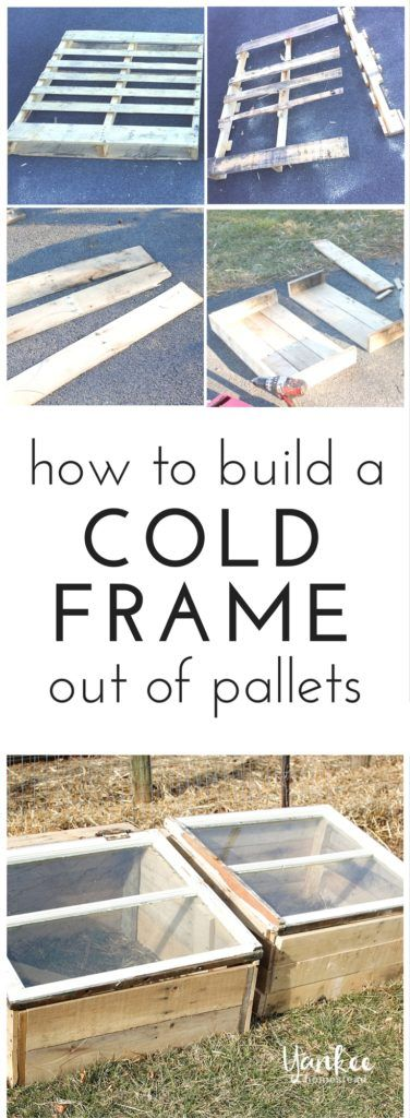 How to Build a Cold Frame Out of Pallets   Pinterest   Cold frame ...