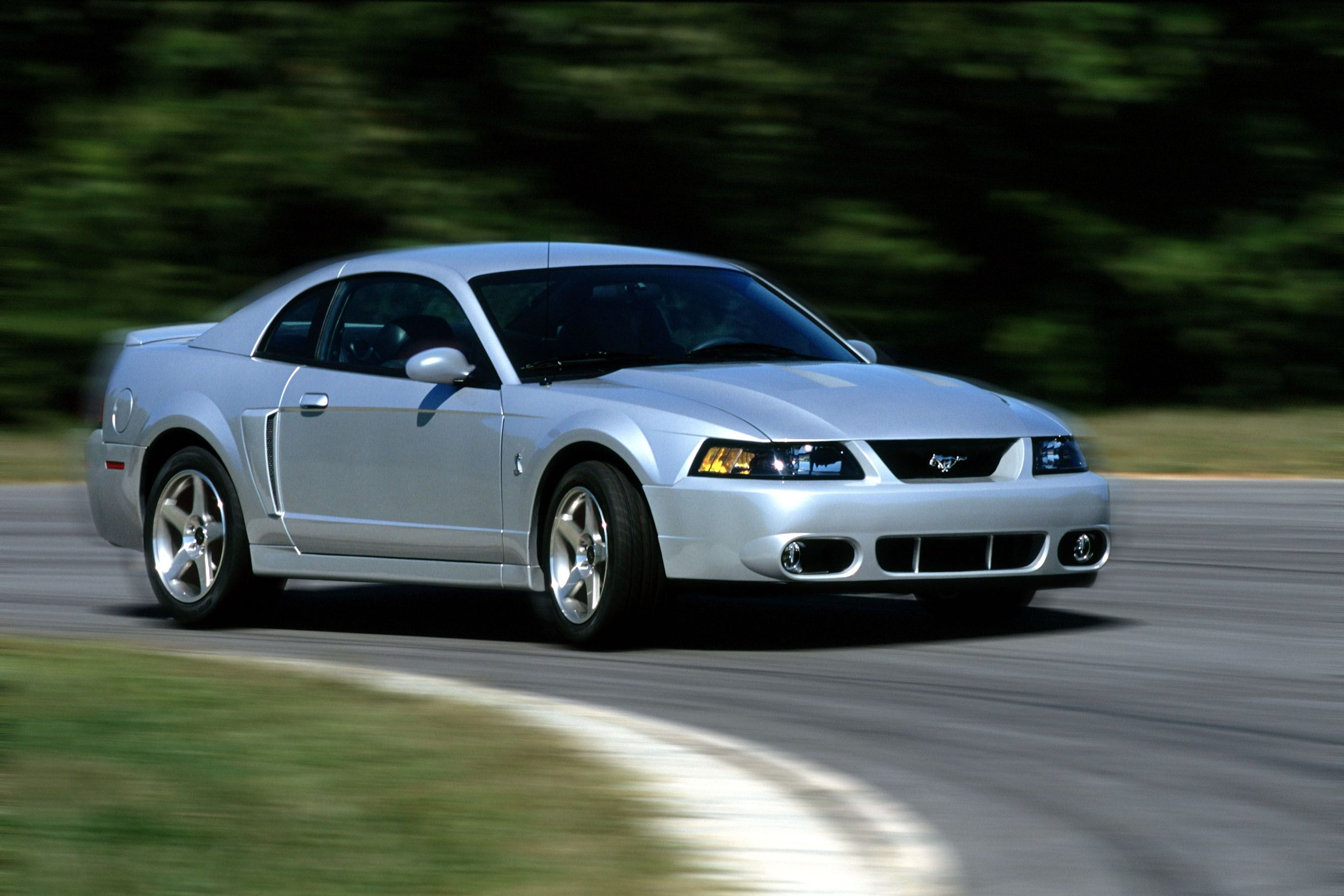 2003 2004 Ford Mustang Svt Cobra In 2020 2003 Ford Mustang Mustang Cobra 2004 Ford Mustang