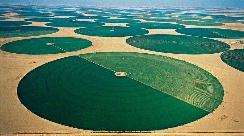 Agroa Agricultura Organica En El Desierto De Wadi Rum