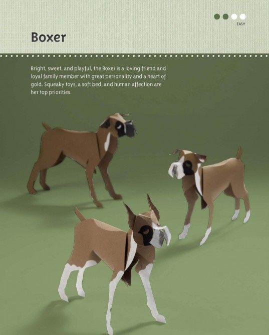 "Paper boxers--a peek inside ""Paper Pups"" by Hiroshi Hayakawa"