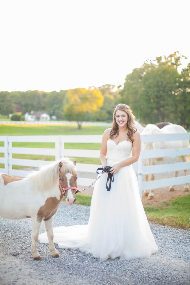 bride with adorable pony at saddle woods farm in murfreesboro tn