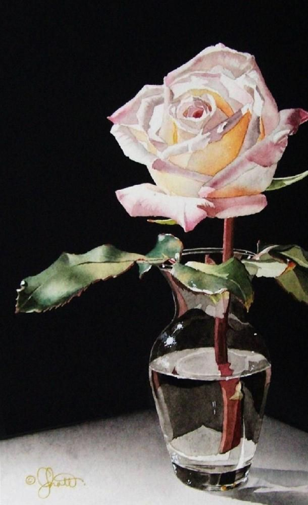 rose in still-life art by Jacqueline Gnott