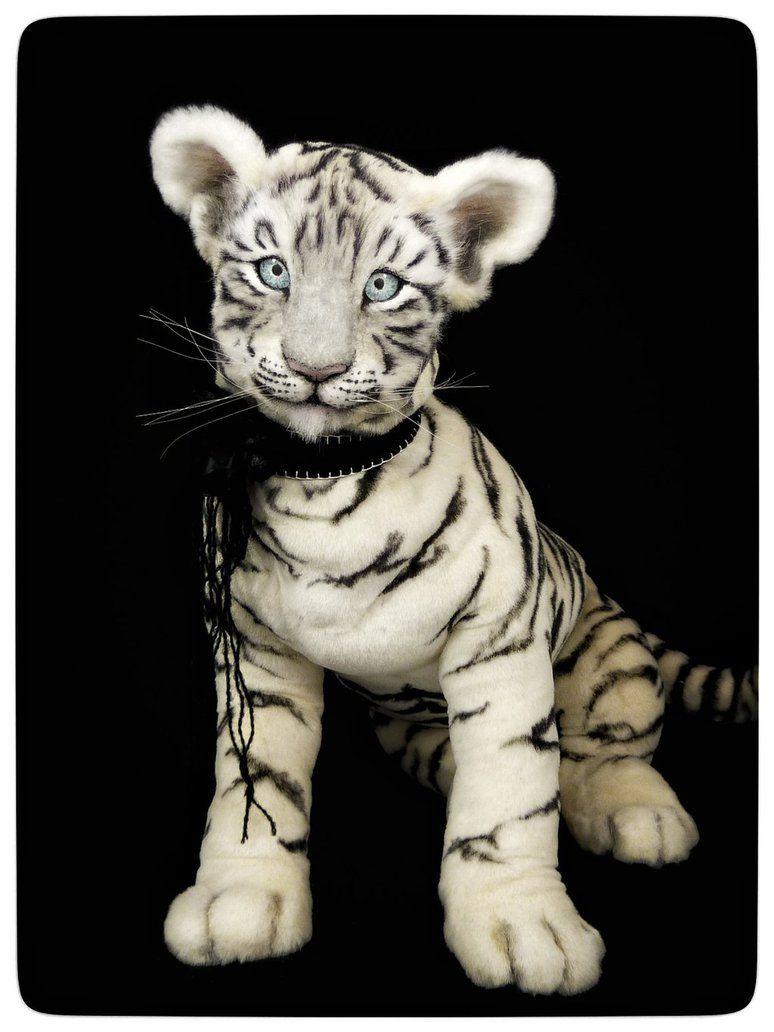 White tiger cub ASIA by KALEideaSCOPE.deviantart.com on @DeviantArt