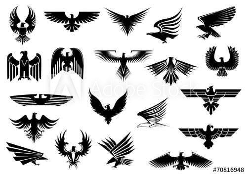 bird set free significado en espa?ol