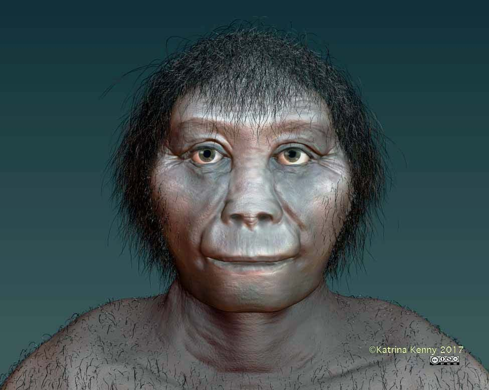 Homo floresiensis facial recreation