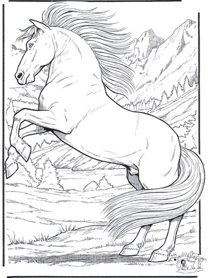 Printable adult coloring pages of realistic Horse Animal