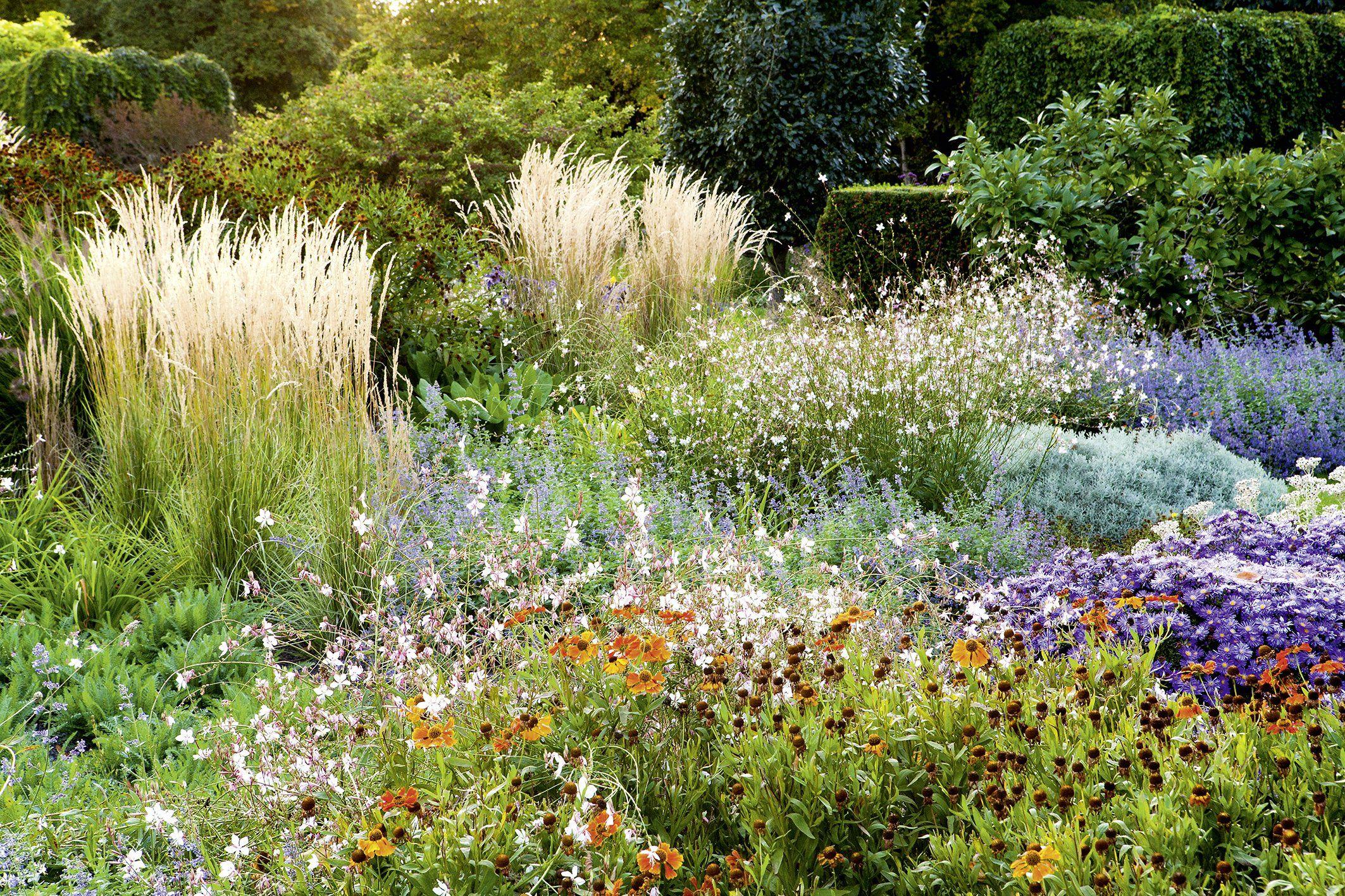 Design für pflegeleichte Gärten Das große Ideenbuch Amazon