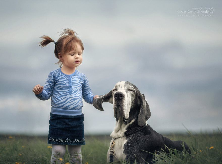 Little Kids And Their Big Dogs Bored Panda Panda And Dog - Tiny children and their huge dogs photographed in adorable portraits by andy seliverstoff