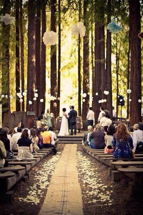 Forest wedding. I love the benches