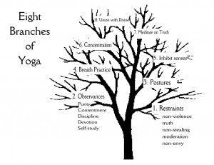 8 BranchesYogaEnglish
