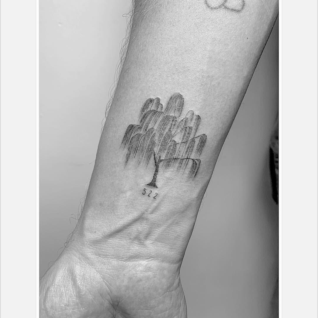 Weeping Willow Tree Singleneedle Tattoosofinstagram Finelinetattoo Weepingwillow Tree 522 Home R Willow Tree Tattoos Tree Tattoo Small Tree Tattoo Back