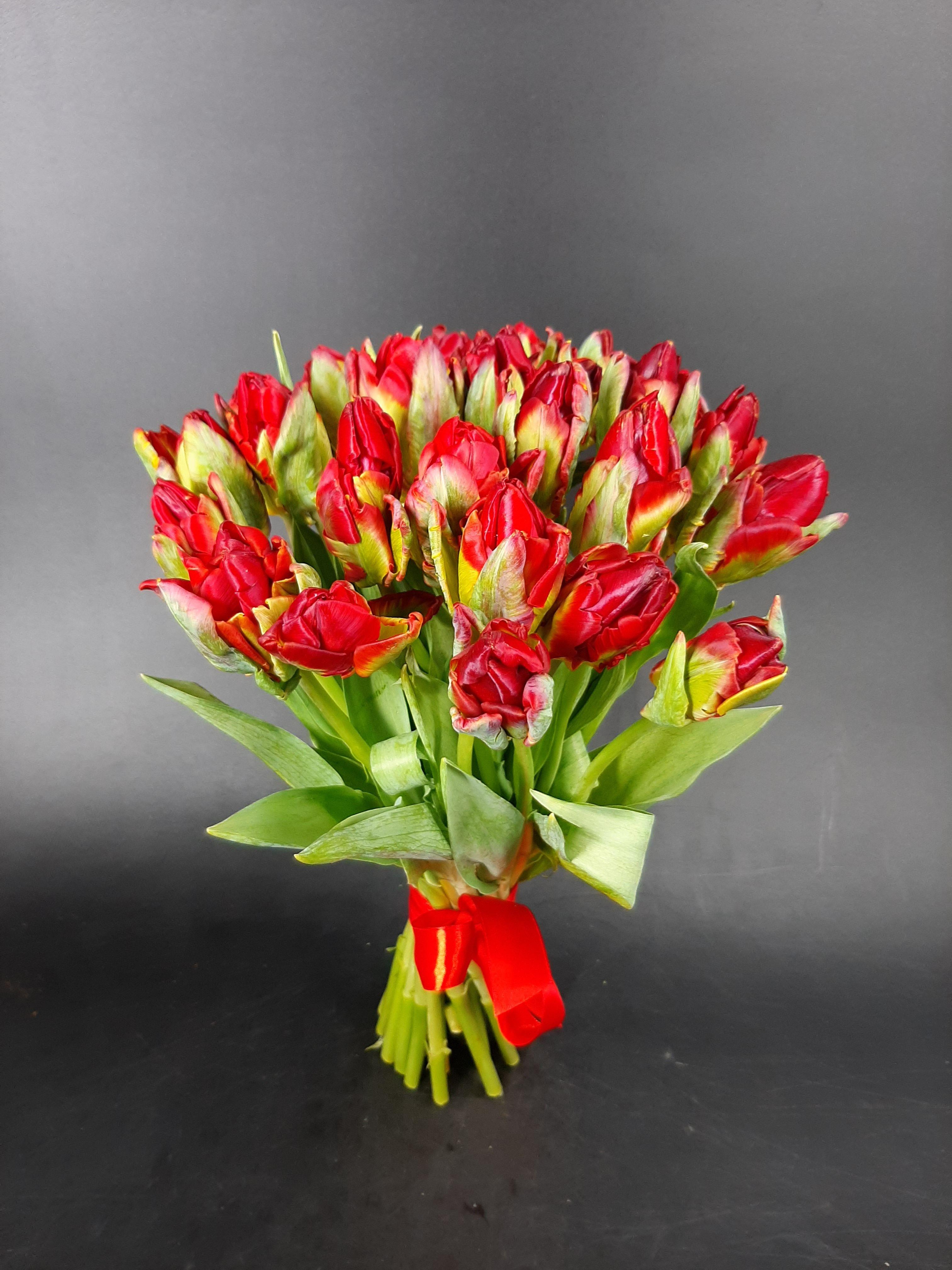 "Photo of Тюльпаны ""Факел"""
