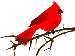 clip art illustration of a red cardinal bird sitting on a branch rh pinterest com cardinal numbers clipart clipart cardinal on branch