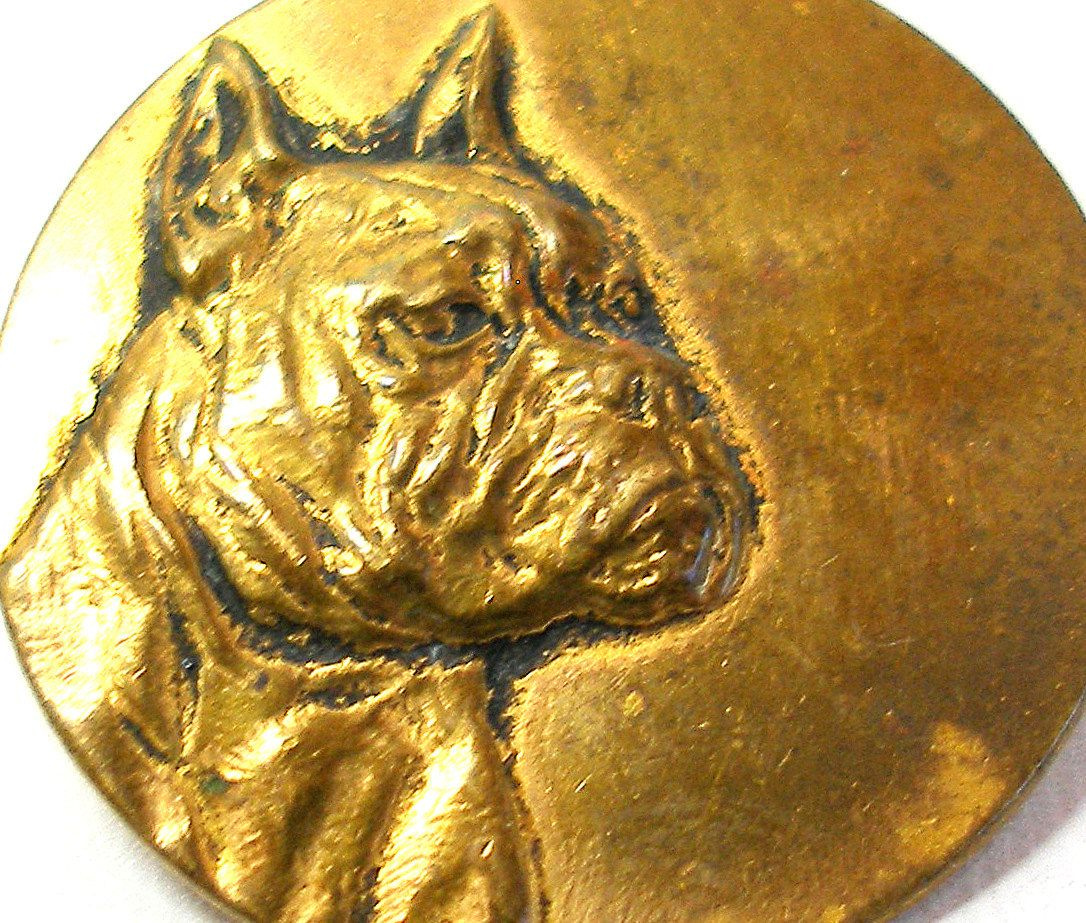 Antique brass Dog BUTTON, 1800s Victorian boxer.