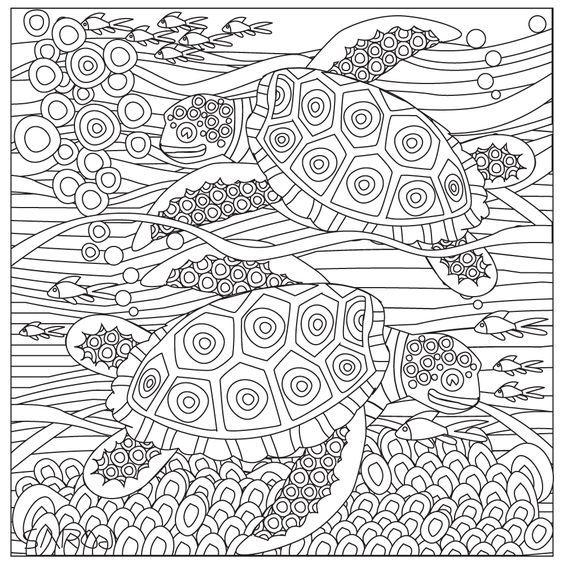 Pin von Barbara auf coloring turtle, penguin | Pinterest