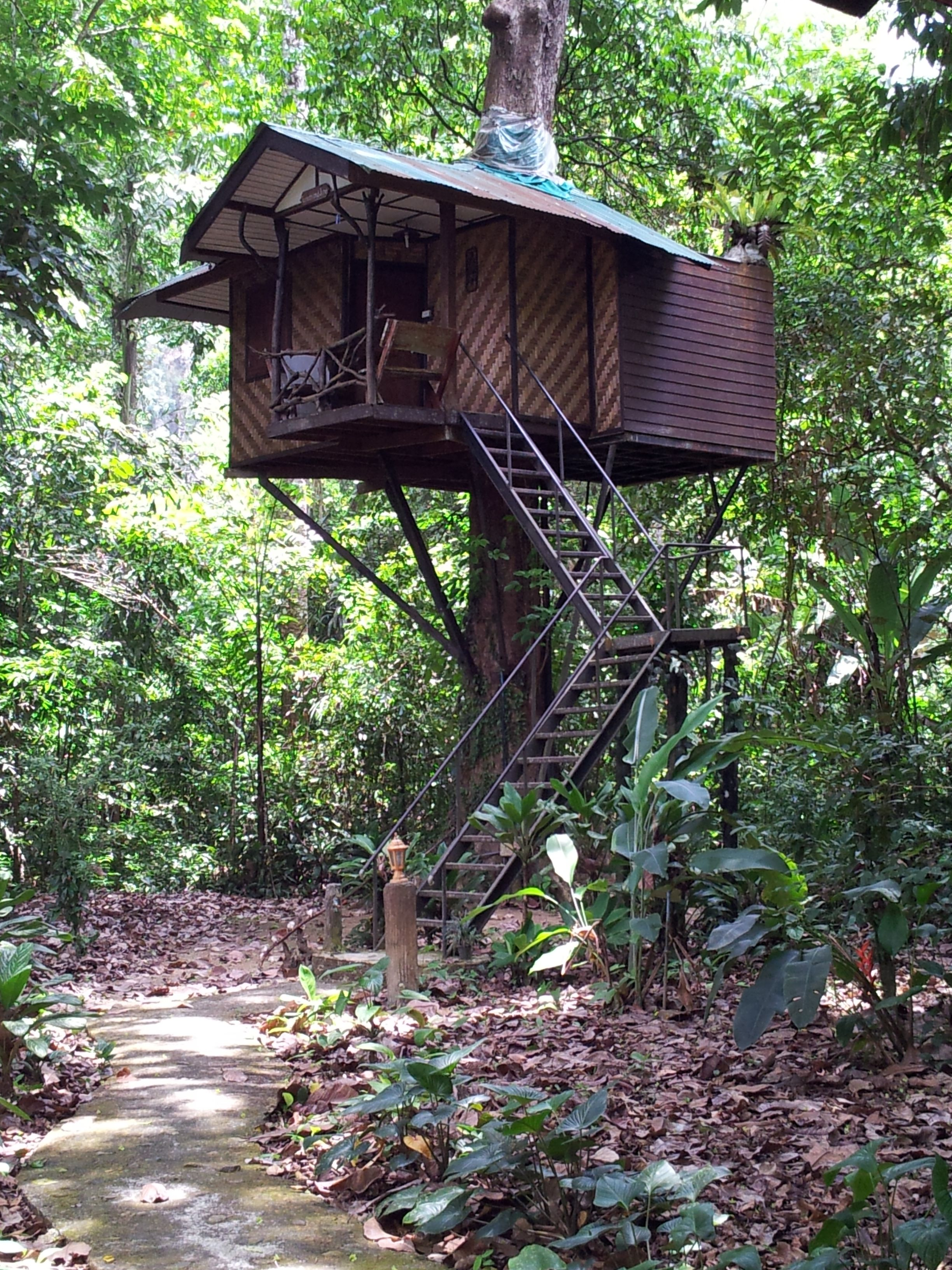 Fancy Staying In A Jungle Treehouse At Nature Resort, Khao