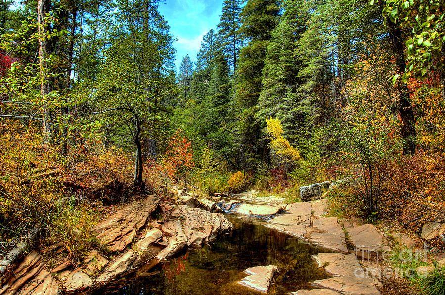 Autumn By The Stream Photograph  - Autumn By The Stream Fine Art Print- Sedona, Arizona