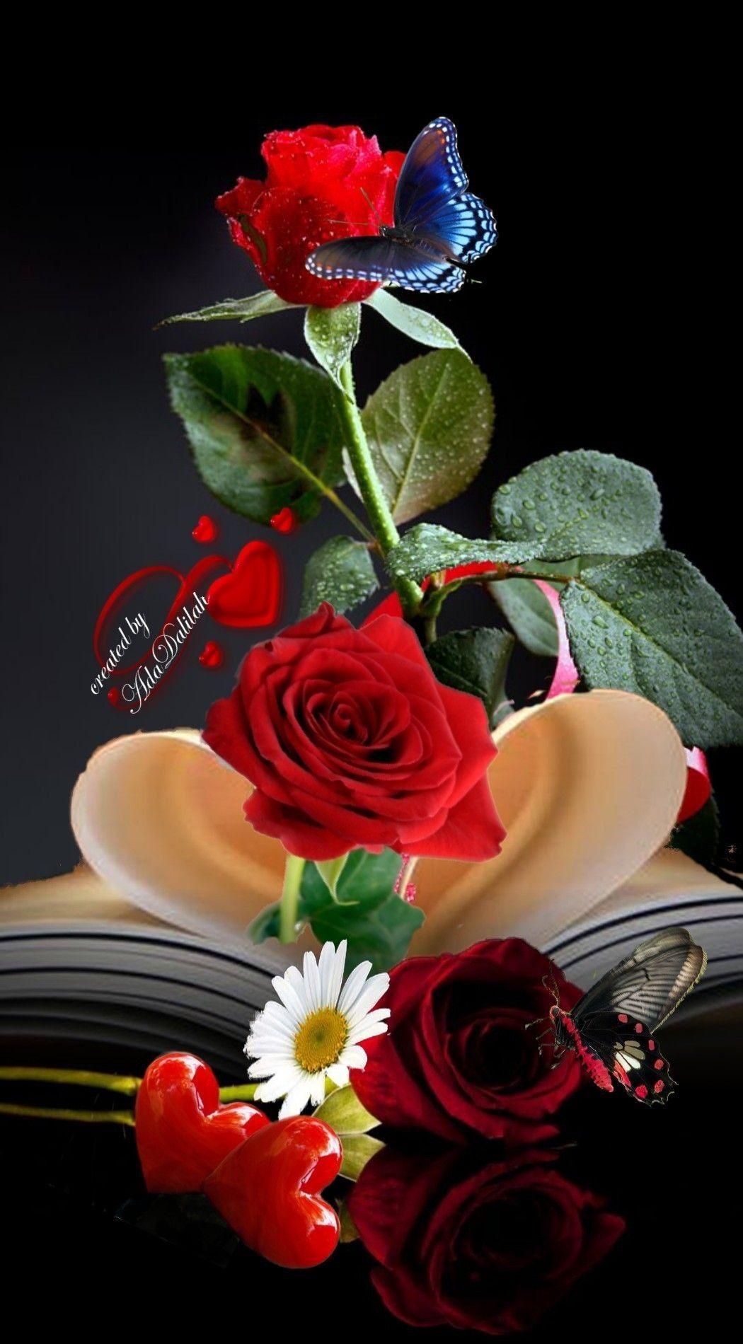 Pin By Pearl Aranda On Beautiful Roses Beautiful Flowers Wallpapers Flower Phone Wallpaper Beautiful Rose Flowers