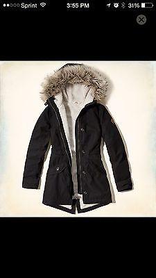 hollister parka coat
