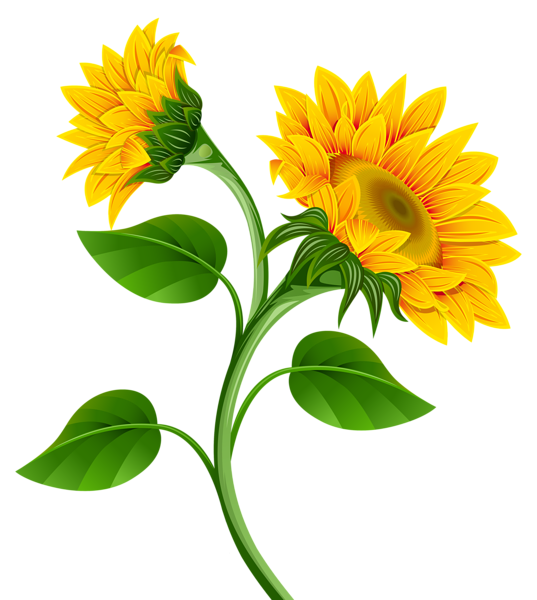 http favata26 rssing com chan 13940080 all p244 html er eveler rh pinterest ca sunflower clip art free images sunflower clip art free images