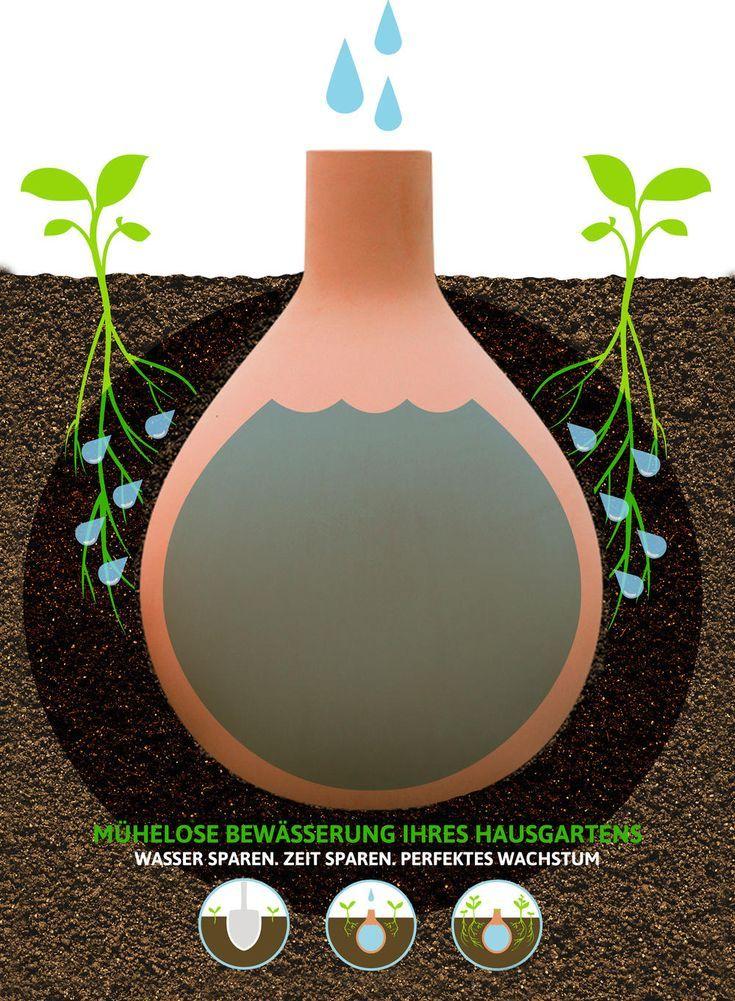 Gartenbewässerung mit Ollas - #Gartenbewässerung #mit #Ollas #pflanzen #schönegärten