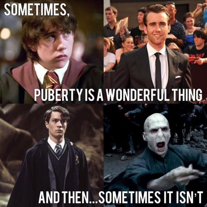 Your Daily Scoop Of Funniest Harry Potter Memes Ep 16 Swish Today Harry Potter Voldemort Harry Potter Puns Harry Potter Memes Hilarious