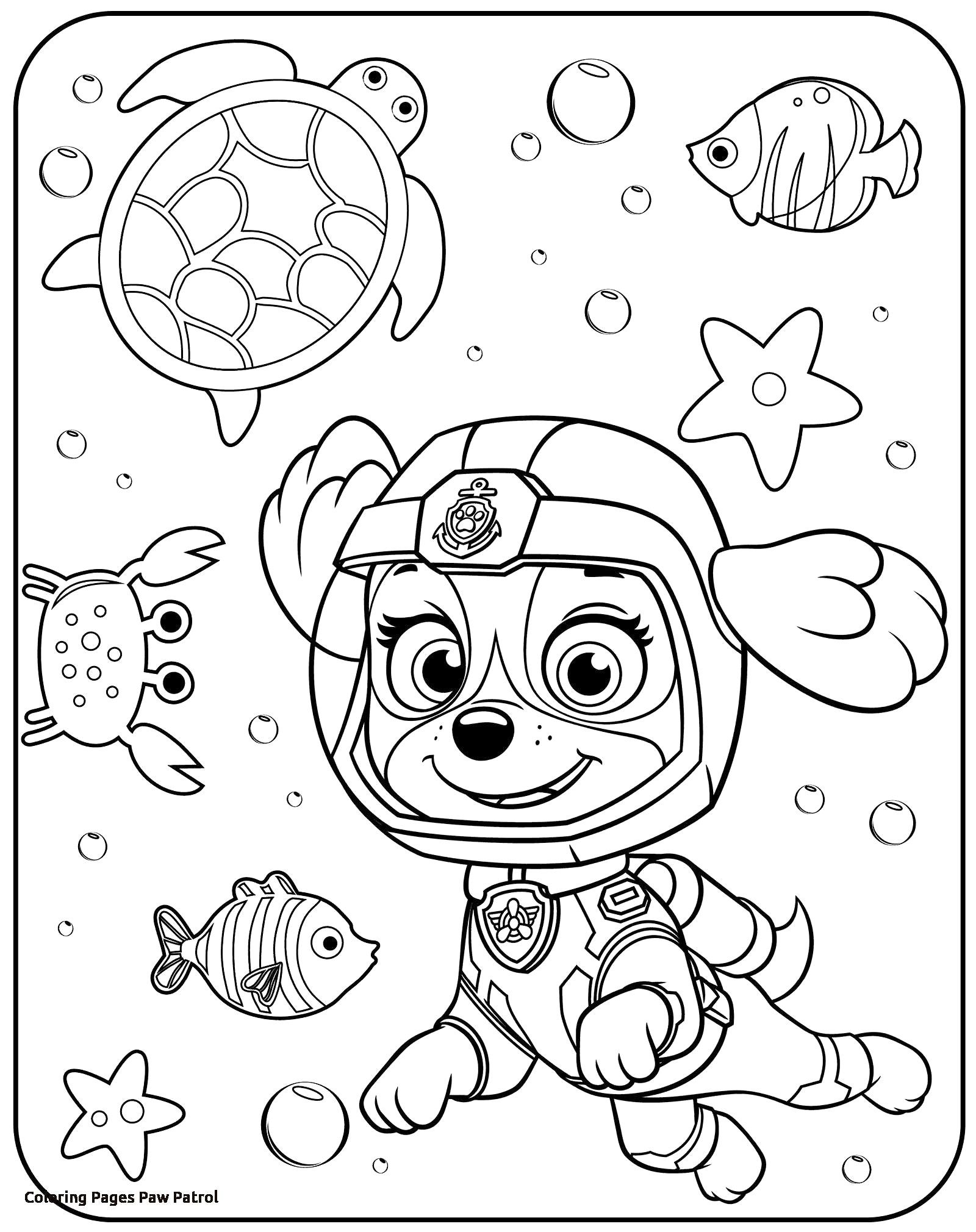 25 Creative Picture Of Free Paw Patrol Coloring Pages Albanysinsanity Com Paw Patrol Coloring Pages Paw Patrol Coloring Birthday Coloring Pages [ 2020 x 1600 Pixel ]